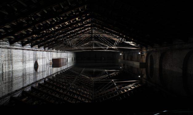 Biennale 2017. Giorgio Andreotta Calò